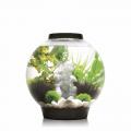 Aquariumsets