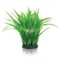biOrb Planten